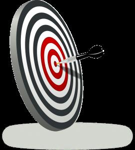 Gli obiettivi si System Mind, un azienda per ogni necessità!