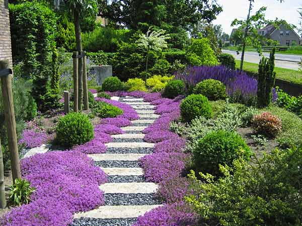 Progettazione giardino system mind for Piccoli stagni da giardino