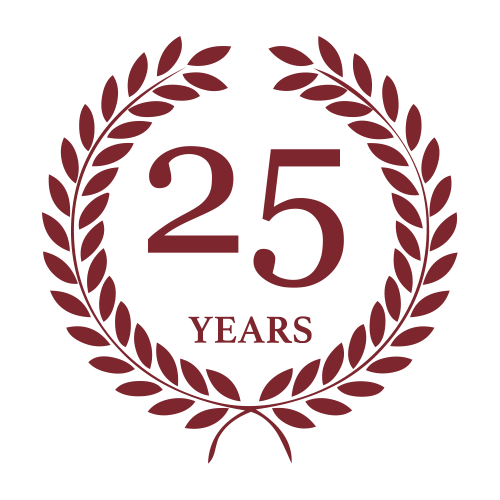 1995 - 2020 - 25 anni di esperienza - System Mind